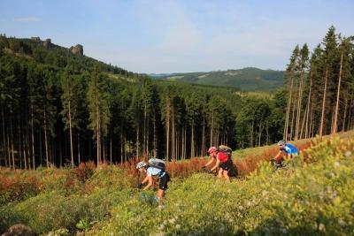 Zu den Steinen (Tour 2) - Bike Arena Sauerland