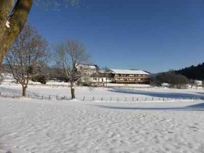 Winterwandelroute Kuckucksuhle (Wandelrondweg 6) Medebach