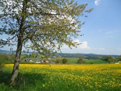 Orkedalrondwandeling Medelon-Berge-Dreislar