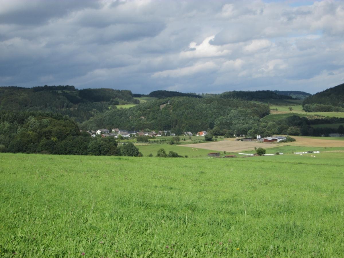 Fernsicht Medebach-Referinghausen