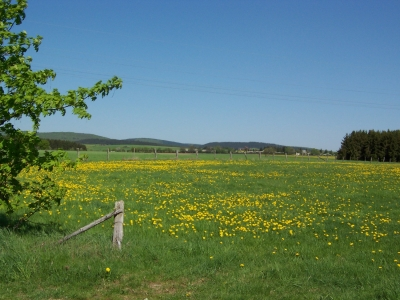 Rond de Bollenberg (A8) Medelon